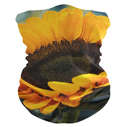 hengpai Neck Gaiter Women Face Scarf Mask-Dust, Balaclava Face Mask Bandana Sunflower Helianthus Annuus Big