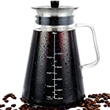 Cold Brew Coffee Maker 34oz (1L) with Hand-Blown Glass Pitcher, Stainless Steel Filter...