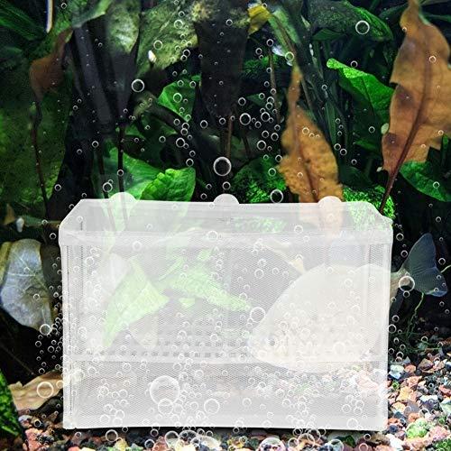 Pssopp Aquarium Ablaichkasten Aquarium Fischzüchter Ablaichkasten Inkubator Aquarium Fisch Züchter Box Aquarium Incubateur Isolation Box mit Saugnapf für Aquarium