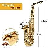 Immagine 2 ammoon sassofono alto ottone oro