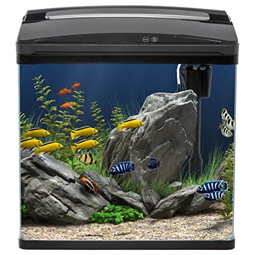 Ace Aqua 40L Fish Tank/Aquarium Curved Glass