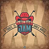 Volunteer Jam XX - A Tribute to Charlie Daniels (Various Artists) [Import USA]