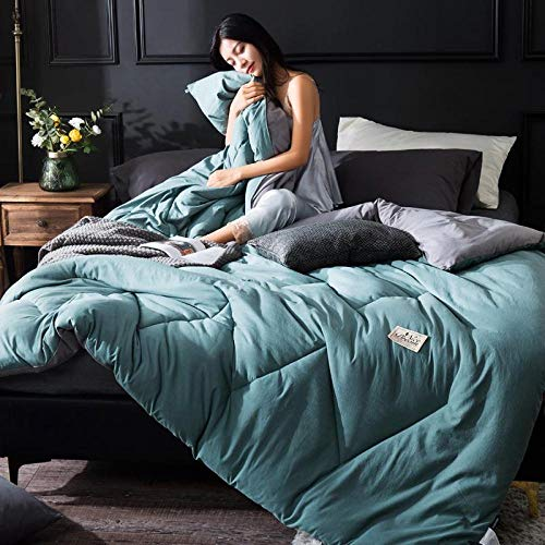 Gasgff Premium de Luxe Daunendecke Hohe Qualität und Komfortables Material Gesteppte Quilt King Queen voller Größe Tröster Pflaume_150CM 200CM 3KG daunendecke