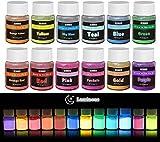 Pigmento di Resina Epossidica Fluorescente - 12x 20g Polvere Fluorescente Resina per Resin, Slime,...