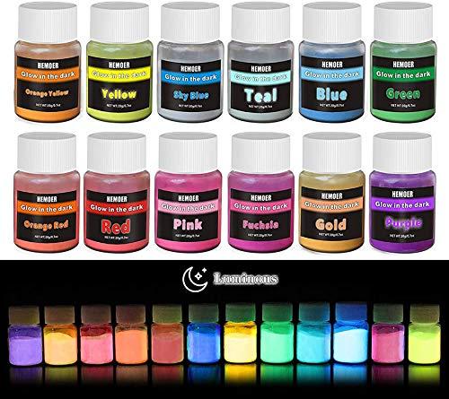 Pigmento di Resina Epossidica Fluorescente - 12x 20g Polvere Fluorescente Resina per Resin, Slime, Chiodo - Glow In The Dark Pigment Luminescente Colorati per Nail, Pittura, Acrilica e Artigianato