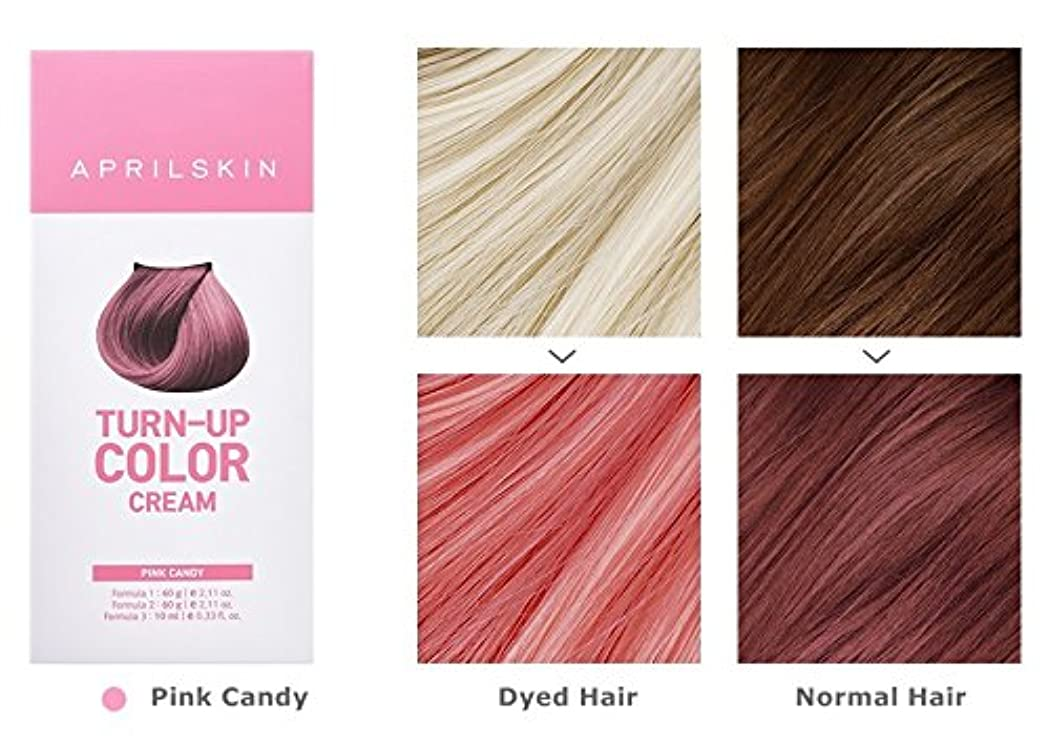 ファイナンス風変わりな差し引くApril Skin Turn Up Color Cream Long lasting Texture Type Hair Dye エイプリルスキン ターンアップカラークリーム長持ちテクスチャタイプヘアダイ (紅)