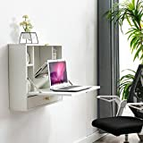 HEQUSigns Wall Mounted Floating Desk, Multi-Function Fold Out Laptop Desk with Folding Desktop, Open Shelves and Drawer, Home Office, Space-Saving(White)