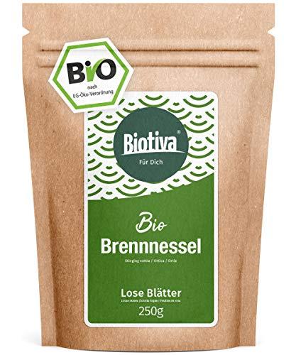 Brandnetelblad-thee Bio (250 g) - Brandnetelthee - losse bladeren - 100% biologische brandnetelkruiden - gevuld en gecontroleerd in Duitsland (DE-ÖKO-005) - GP: 3,56/100 g