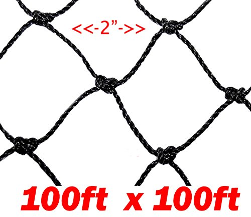 Strong 100ft X 100ft Net Netting for Bird Poultry Aviary Game Pens, 2-inch Hole