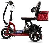CYGGL CYGGL Sicherheitsscooter Elektromobil Elektrisches Dreirad Hlithium Batterie Faltbares Roller Bequemer Sitz Geeignet für Ältere Menschen Stahlrahmen (40KM)
