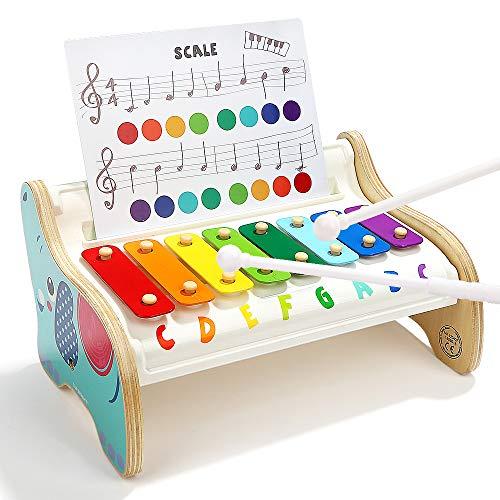 TOP BRIGHT Xilófono Infantil de Madera para Niños Pequeños - Instrumentos Musicales Infantiles – Juguete Bebes 1 año - 3 Canciones Diferentes - Teclas de Colores del Arco Iris - Educativo y Di