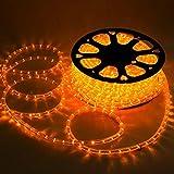 SHIYUSHI Holiday Lighting LED Rope Light Spool Saffron 50ft