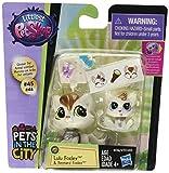 Littlest Pet Shop Pet Pawsabilities Lulu Foxley & Reynard Foxley