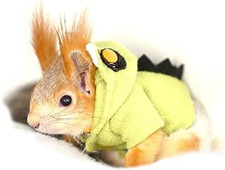 PETLOCA Squirrel Costumes Pet Squirrel Ferret Clothes Cute Beautiful Holiday Photo Keep Warm Squirrel Leash Handmade Little Monster Costume Green M