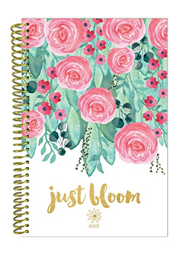 """bloom daily planners 2018 Calendar Year Daily Planner - Passion/Goal Organizer - Monthly and Weekly Datebook Agenda Diary - January 2018 - December 2018-6"""" x 8.25"""" - Just Bloom"""