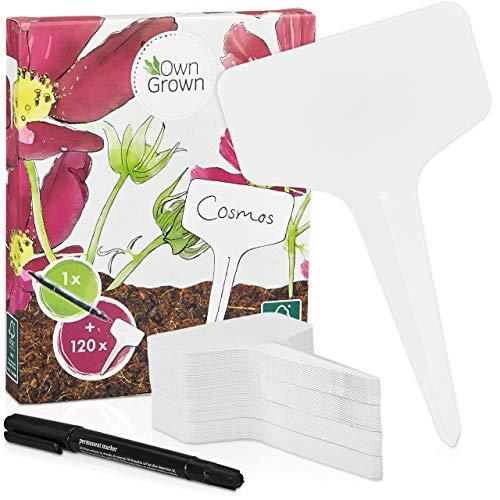 Stecketiketten zum Beschriften: Premium Kunststoff Pflanzenstecker mit 120x Pflanzschilder u. Stift – Schöne Pflanzenschilder zum Beschriften wetterfest – Plastik Schilder zum Beschriften von OwnGrown