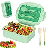 Sinwind Lunch Box, Porta Pranzo, Bento Box con 3...
