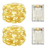 2 Pack Battery Operated Mini Lights,Indoor Led Fairy Lights with Timer 6 Hours on/18 Hours Off for Wedding Party Decorations,50 Count LEDs,18 Feet Silver Wire (Warm White)