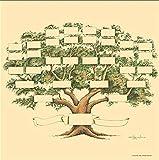 YUY Diagrama De árbol Genealógico Lienzo De Bricolaje Escrito A Mano para Completar La Historia Familiar Personal,F