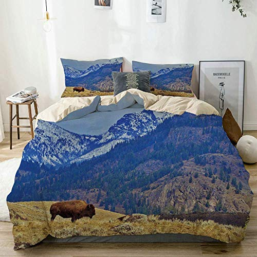 Juego de funda nórdica beige, paisaje panorámico con bisontes solitarios y montañas nevadas en Grand Loop Yellowstone, juego de cama decorativo de 3 piezas con 2 fundas de almohada Easy Care Anti-Alér