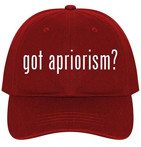 got Apriorism? - A Nice Comfortable Adjustable Dad Hat Cap, Red