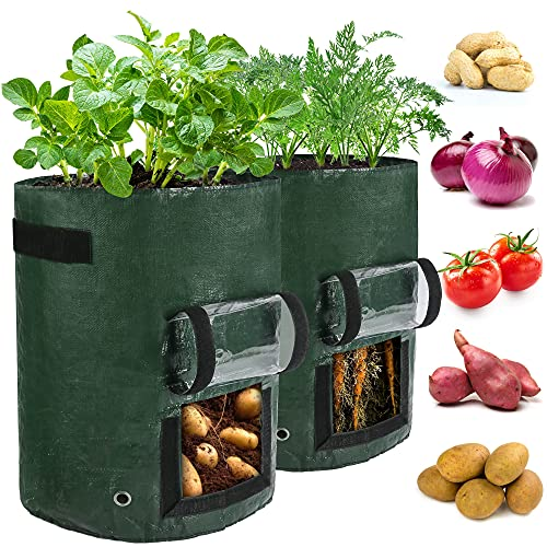 LotFancy Potato Grow Bags, 2 Pack, 10 Gallon Garden Plant Containers with Transparent Flap Window,Handles, PE Planter Pots for Vegetable, Carrot, Tomato, Onion, Dark Green