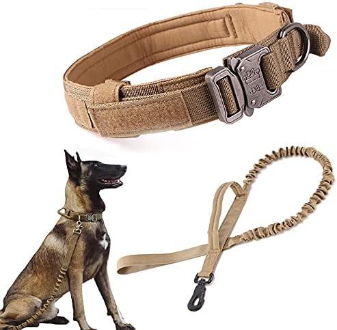 Collar para perros _image2
