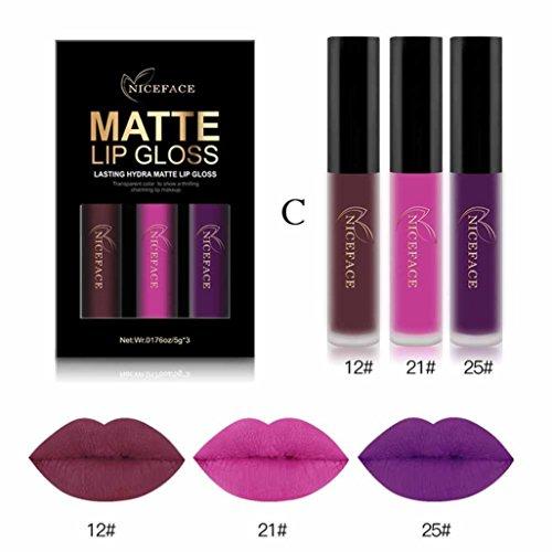 Btruely 3PCS Lippenstift Dauerhafte Lipstick Langlebiger Wasserdichter Matte Flüssigkeit Lippenstift Wasserdichtes Lippenglanz Make up Konturenstifte Kosmetika Set (G)