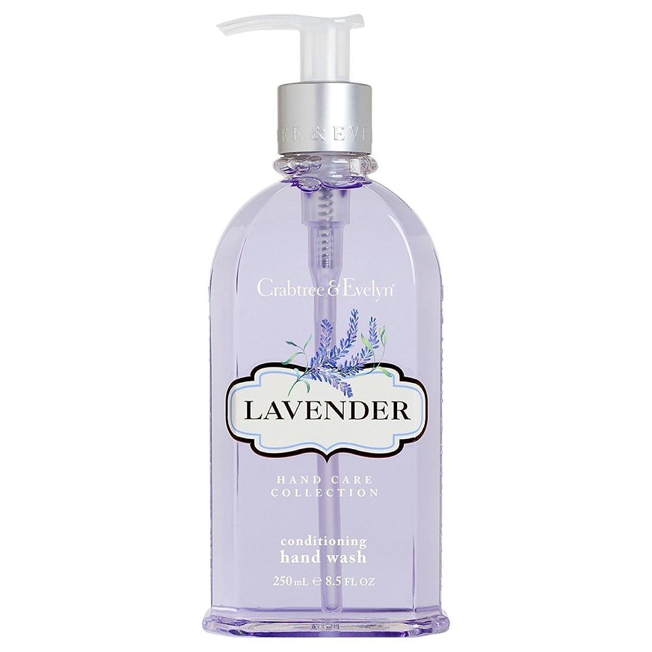裕福な適用済み雑品クラブツリー&イヴリンラベンダーコンディショナーハンドウォッシュ250ミリリットル (Crabtree & Evelyn) (x6) - Crabtree & Evelyn Lavender Conditioning Hand Wash 250ml (Pack of 6) [並行輸入品]
