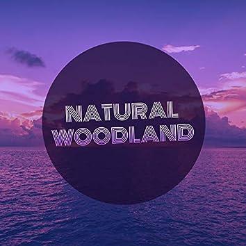 Natural Woodland, Vol. 6