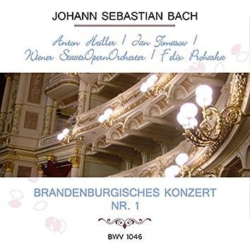 Anton Heiller / Jan Tomasow / Wiener Staatsopernorchester / Felix Prohaska Play: Johann Sebastian Bach: Brandenburgisches Konzert NR. 1, Bwv 1046 (Live)