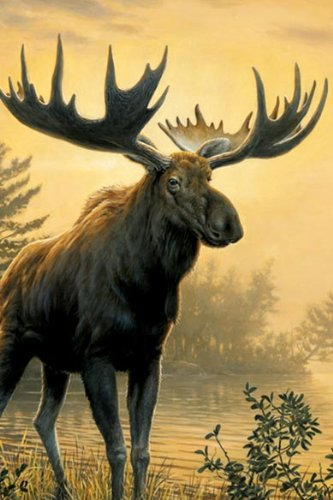 Tree-Free Greetings Noteables Notecards In Reusable Embossed Tin, 12 Card Assortment, Recycled, 4 x 6 Inches, Northwoods Moose, Multi Color (76007) Photo #3