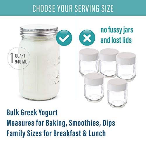 Stainless Steel Yoghurt Maker with 1 Quart Glass Jar and Complete Recipe Book to Make 12+ Easy Homemade Dairy Free and Milk Yogurts