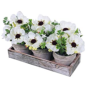 Winlyn Set of 3 Artificial White Poppy Flower Plants in Pots Poppy Flowers Mini Potted Plants Arrangement with Wood Planter Box for Spring Decor