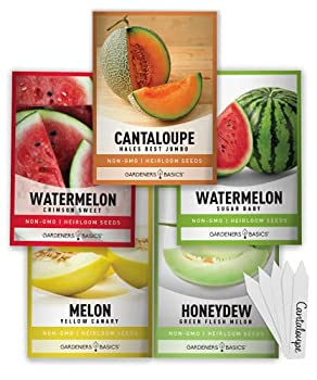 melon seeds for planting