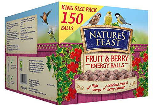 Nature's Feast Fruit and Berry Energy, Suet, Fat Balls For Wild Birds, Pack of 150