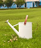 WEQUALITY Watering Can for Outdoor&Indoor,Metal Plant Watering Can with Copper Accents,1 Gallon Galvanized Steel Gardening Tool,White Color
