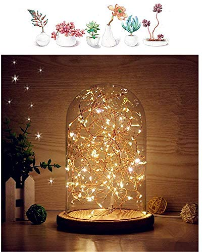 MUCHER Glass Bell Jar Display Dome Bamboo Base USB Bedside Table Lamp with LED Fairy Starry String Lights Ideal for Decoration Anywhere (Warm White)