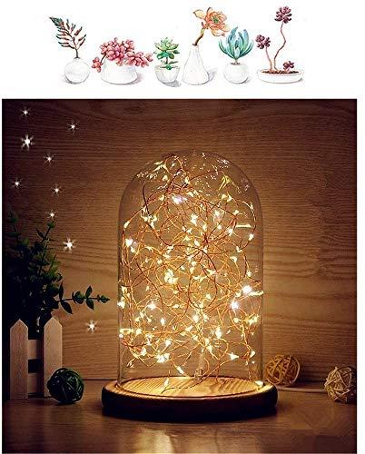 Mucher Verre Dôme lampe de Bell Jar Dôme Bamboo base Affichage chaîne USB LED chaud Table de chevet lumière blanche Lampe idéal chaud fées étoilées de lumières LED pour la décoration