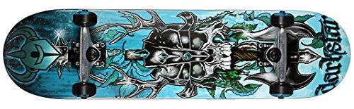 Skateboard completo da sci Dark Star FP 8,00