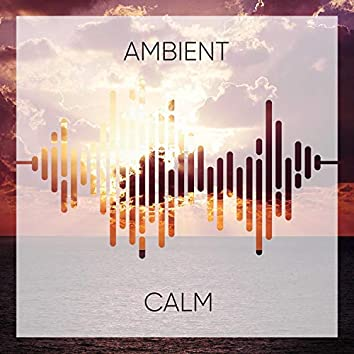 #Ambient Calm