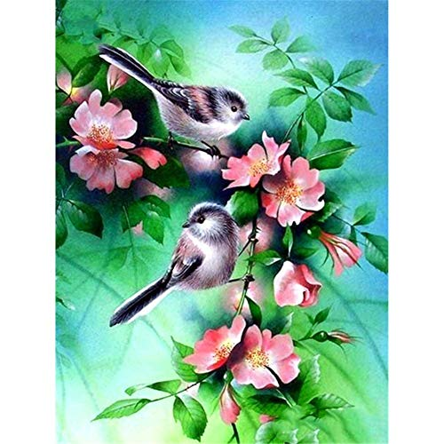 DIY Diamond Painting Kits for Adults, Kids,Room Decor House Office Presents for Her Him Flowers and Birds 11.8x15.7 in by Lazodaer