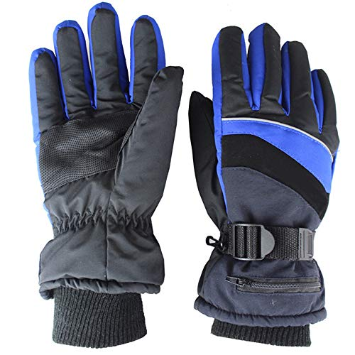 Sidiou Group Elektrische Beheizte Handschuhe USB Wiederaufladbare Heizhandschuhe Motorrad Damen Reithandschuhe Winter Skihandschuhe Herren Wasserdicht Warm Handschuhe Camping Ski (Blau, One Size)