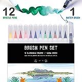 Stationery Island Brush Pens Set de 12 Colores Esenciales + 1 Pincel Aqua - Set de Rotuladores Punta de Pincel de Acuarela. Ideal para Caligrafía, Bullet Journal, Fabricar Tarjetas y Colorear