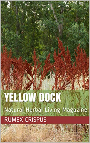 Yellow Dock: Natural Herbal Living Magazine March 2016 (English Edition)