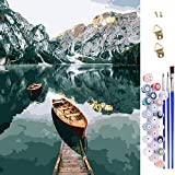 Paint by Numbers,Lachesis DIY Canvas Oil Painting Kit with Paintbrushes Acrylic Pigment for Kids, Adults Beginner, Students,Home Decoration Gifts,16x20 inch (C)