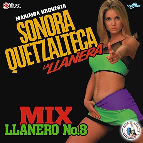 Mix Llanero 8: De Rodillas Te Pido / Lágrimas del Corazón / Solo Dejé Yo a Mi Padre / Dos Cartas y una Flor / Por Eso Vuelve