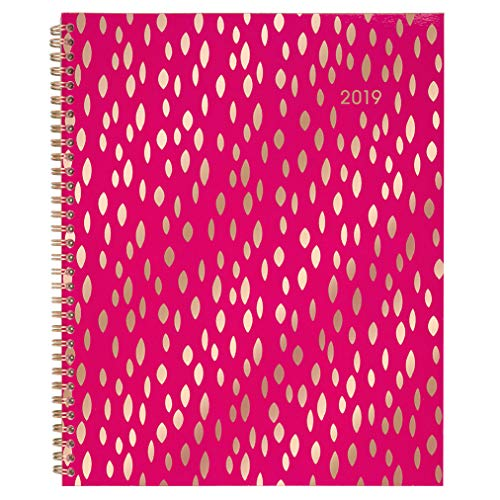 "Cambridge 2019 Weekly & Monthly Planner, 8-1/2"" x 11"", Large, Customizable Clear Poly Cover, Jam (1137-901)"