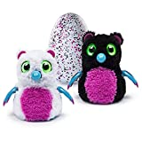 Hatchimals Hatching Egg Interactive Creature Bearakeet Baby Toy, Pink/Black