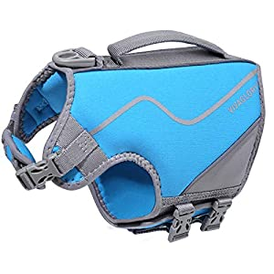 VIVAGLORY Neoprene Dog Life Jacket, Puppy Life Vest with Three Adjustable Straps and Side-Release Buckles for Quick on & Off, Blue XS